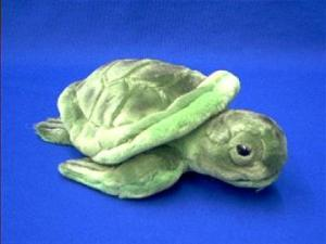 baby sea turtle plush stuffed animal