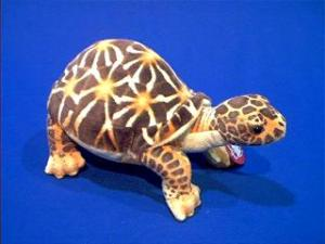 desert turtle plush stuffed animal