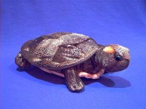 red eared turtle stuffed animal plush
