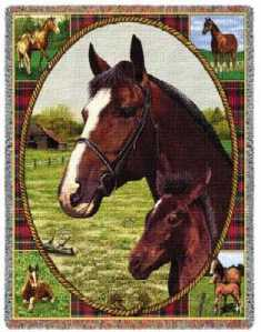 thoroughbred horse blanket throw