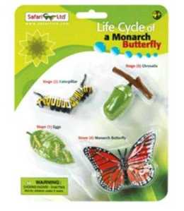 Life Cycle Monarch Butterfly Toy Miniature