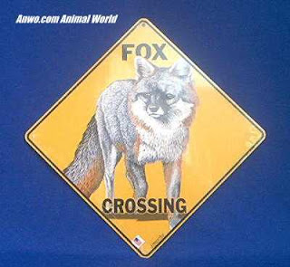grey fox crossing sign
