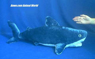 jumbo large shark plush stuffed animal toy