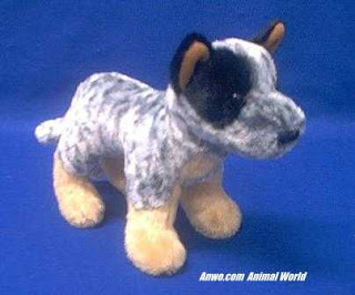 australian cattle dog plush stuffed animal toy