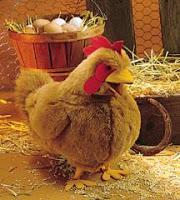 chicken puppet hen