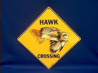 Red Tail Hawk Sign