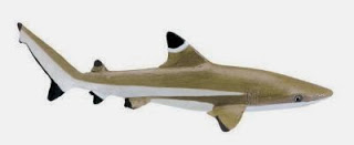 http://anwo.com/store/blacktip-reef-shark-toy-miniature.htm