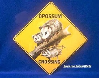 Opossum Crossing Sign