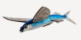 flying fish toy miniature replica