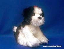 Shih Tzu Plush Stuffed Animal Toy