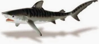 Tiger Shark Toy Miniature Replica